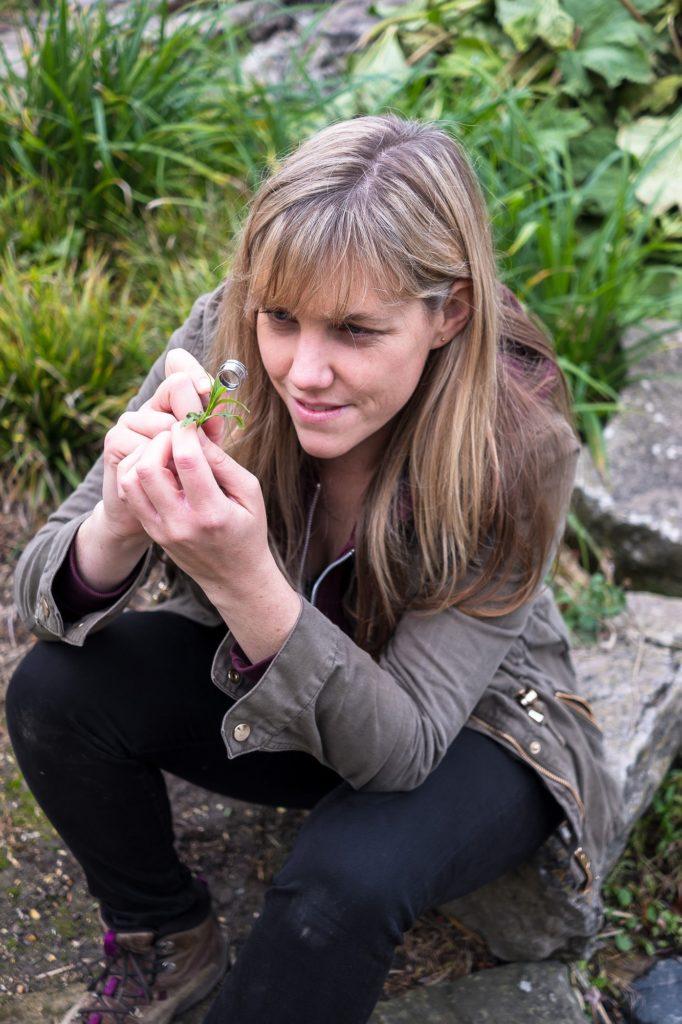 Rachel Bicker